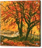 Taughannock Park Trumansburg New York Acrylic Print