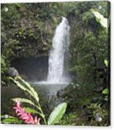 Taveuni, Tavoro Waterfall Acrylic Print