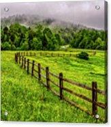 Tea Creek Meadow And Buttercups Acrylic Print
