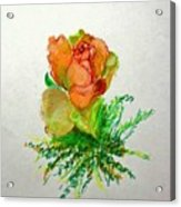 Tea Rose                        Copyrighted Acrylic Print