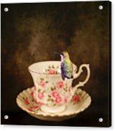 Tea Time With A Hummingbird Acrylic Print