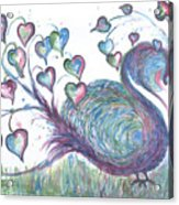 Teal Hearted Peacock Watercolor Acrylic Print