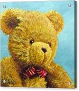 Teddy Bear Acrylic Print