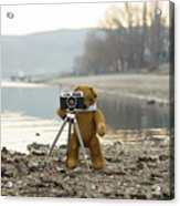 Teddy Bear Taking Pictures With An Old Camera By The Riverside Acrylic Print