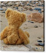 Teddy On A Beach Acrylic Print