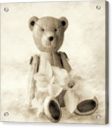 Teddy With Daffodils - Toned Acrylic Print