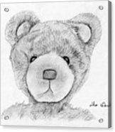 Teddybear Portrait Acrylic Print