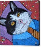 Teddys Daydream Acrylic Print