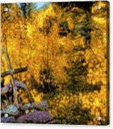 Telluride Spirituality - Colorado - Autumn Aspens Acrylic Print