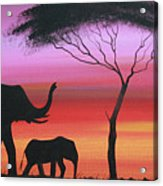 Tembo Acrylic Print