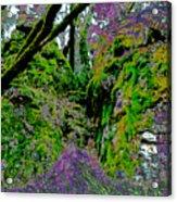 Temple Of Joy Acrylic Print