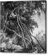 Temporary Tree Dwelling Acrylic Print