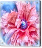Tenderness Acrylic Print