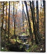Tennessee Falls Acrylic Print
