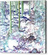 Teplice Acrylic Print by Dana Patterson