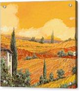 terra di Siena Acrylic Print