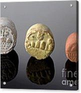 Terra Sigillata, Plague Medicine Acrylic Print