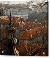 Terracotta Crowns Acrylic Print