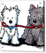 Terrier Walking Buddies Acrylic Print by Kim Niles