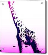 Test 2 Pnk Purple Giraffe Acrylic Print