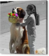 Cuenca Kids 952 Acrylic Print