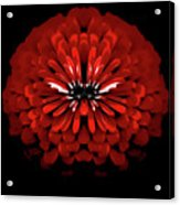 Test Red Abstract Flower 3 Acrylic Print