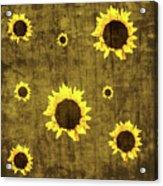 Test Rustic Sunflower Custom Acrylic Print