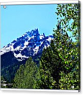 Teton Picture Perfect Acrylic Print