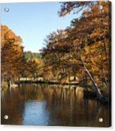 Texas Autumn Acrylic Print