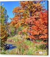 Texas Hill Country Autumn Acrylic Print