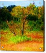 Texas Landscape 102310 Acrylic Print