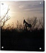 Texas Landscape Acrylic Print