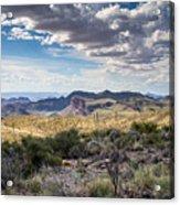 Texas Landscapes #3 Acrylic Print