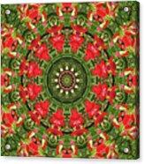Texas Paintbrush Kaleidoscope Acrylic Print