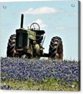 Texas Spring Acrylic Print