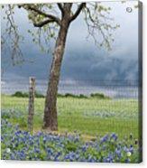Texas Spring Storm Acrylic Print