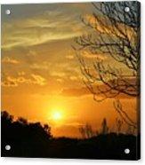 Texas Sun Acrylic Print