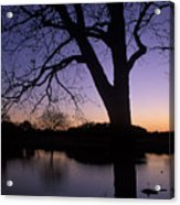 Texas Sunset On The Lake Acrylic Print