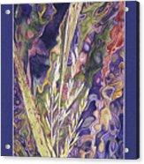 Texas Wild Rice Acrylic Print