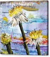 Texas Wildflowers Tp A E Acrylic Print