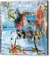 Texas Wildflowers Tp Ab Acrylic Print