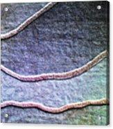 Textile Abstact Acrylic Print