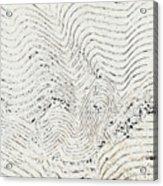 Texture 811 Acrylic Print
