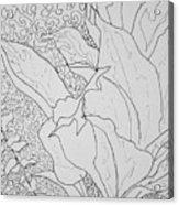 Texture And Foliage Acrylic Print