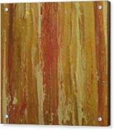 Textured Cinnamon Acrylic Print by Sonya Wilson