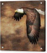 Textured Eagle 2 Acrylic Print