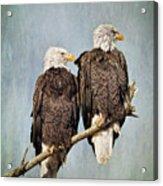 Textured Eagles Acrylic Print