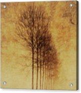 Textured Eerie Trees Acrylic Print