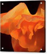 Textured Orange Acrylic Print