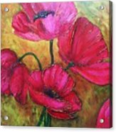 Textured Poppies Acrylic Print